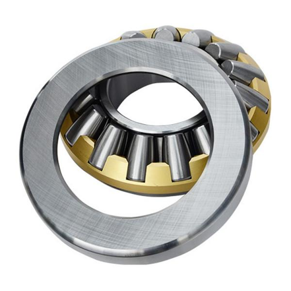 NJ 344 M Cylindrical Roller Bearings 220*460*88mm #2 image